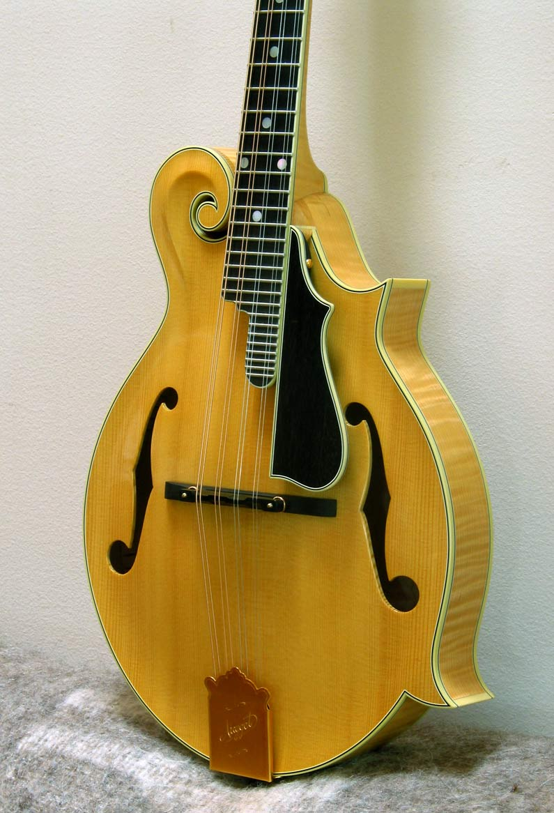 The Mandolin Archive: Nugget F5 Deluxe Mandolin #255